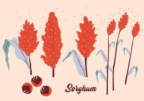 Sorghum-Vektor-Pack
