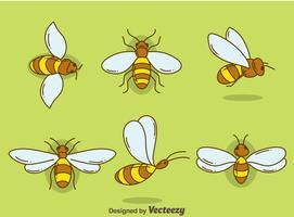 Handdragen Hornets Collection Vector
