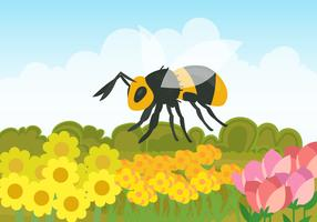 En Hornet Inom Blomsterfältet vektor