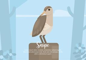 snipe illustration vektor