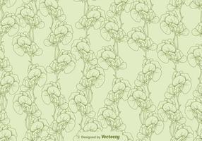 Vektor-süße Erbsen-Blumen-nahtloses Muster vektor