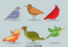 Vogel Sammlung Vektor