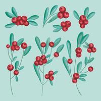 Vektor handgezeichnete Cranberries