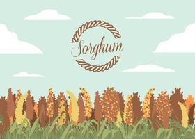 sorghum fält illustration vektor