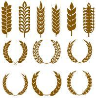 Vektor Weizen Ohren Icon Set