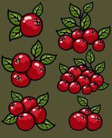 Vektor-Cranberry-Karikatur-Ikonen-Set