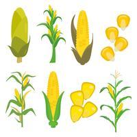 Kostenlose Mais Stiele und Hühner Vektor
