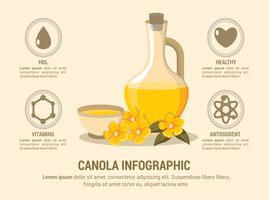 Canola Infographik vektor