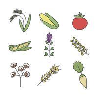 Icke-GMO gröna och vegetabiliska vektorer