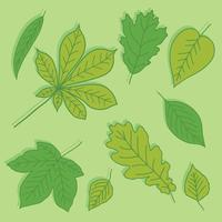 Grün lässt Sammlungs-Vektor