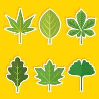 Flaches Baum-Grün verlässt Vektor