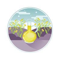 Canola-Blume und Öl vektor