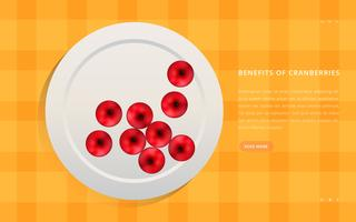 Cranberries gesunde Frucht-Illustration