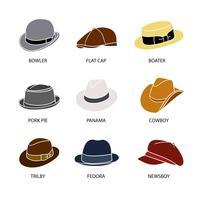 9 hatt stilar vektor