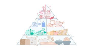 Freier Nahrungsmittelpyramide-Vektor vektor