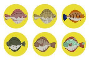 Flunder-Fische mit Kreis-Hintergrund-Vektor-Sammlung vektor