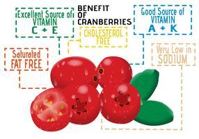 Fördelar med tranbär