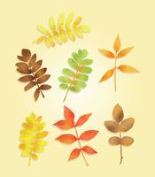 Freier strukturierter Herbstlaub-Vektor