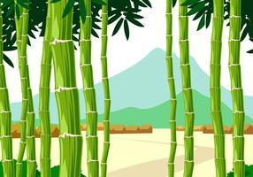 Panorama Bambus Kostenlose Vectorr vektor
