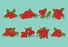 Cranberries-Icon-Set