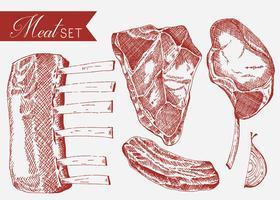 Kalvkött uppsättning handdragen vektor