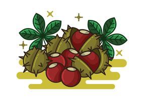 Rosskastanien-Nüsse und Blätter vektor
