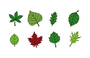 Blätter Icon Pack vektor