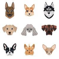 samling av hund ansikten vektor