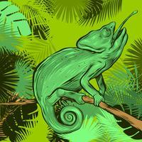Kameleon På En Gren Av Tropiska Blad Ram