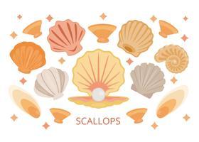 Kostenlose Jakobsmuscheln Sea Shell Vektor