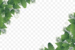 hörnram av olika vilda löv vektor