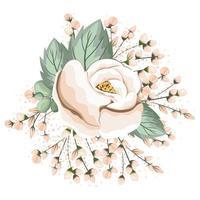 weiße Rosenblume mit Knospen- und Blattmalerei
