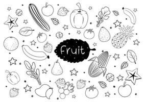 Früchte im Gekritzel- oder Skizzenstil lokalisiert auf weißem Hintergrund