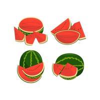 vattenmelon frukt och bitar illustration set