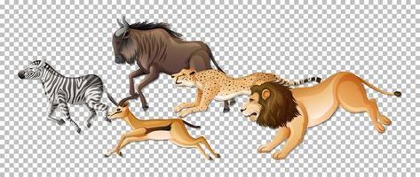 Gruppe wilder afrikanischer Tiere auf transparentem Hintergrund vektor