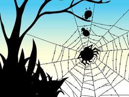 Schatten des Spinnennetz-Naturhintergrunds vektor