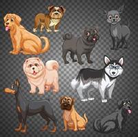 Satz von verschiedenen Hunden isoliert vektor
