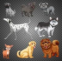 uppsättning av olika hundar isolerade