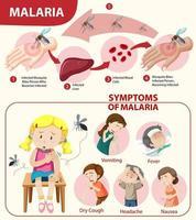 Infografik Informationen zu Malariasymptomen