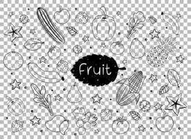 viele Früchte im Gekritzel- oder Skizzenstil lokalisiert auf transparentem Hintergrund