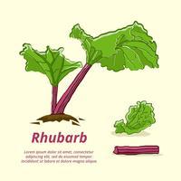 Färsk Rabarber Hand Drawn Vector Illustration