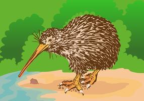 Kostenlose Kiwi-Vogel-Vektor-Illustration vektor