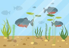 piranha fisk vatten djur illustration