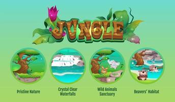 konzeptionelle Infografikschablone des flachen Farbvektors des Dschungels