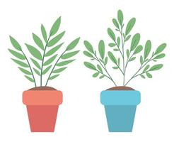 isolierte Pflanzen innerhalb des Topfvektordesigns