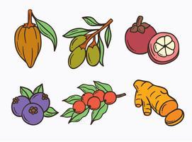 Handdragen Super Foods Vector