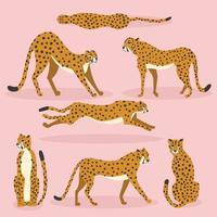 samling av söta handritade geparder på rosa bakgrund vektor