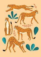 samling av söta handritade geparder vektor