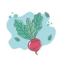 hälsosam mat näring diet ekologisk vegetabilisk betor ikon