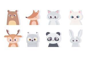 niedliche Tiere Porträt Gesicht Panda Bär Fuchs Katze Kaninchen Fuchs Hirsch Waschbär Ikonen vektor